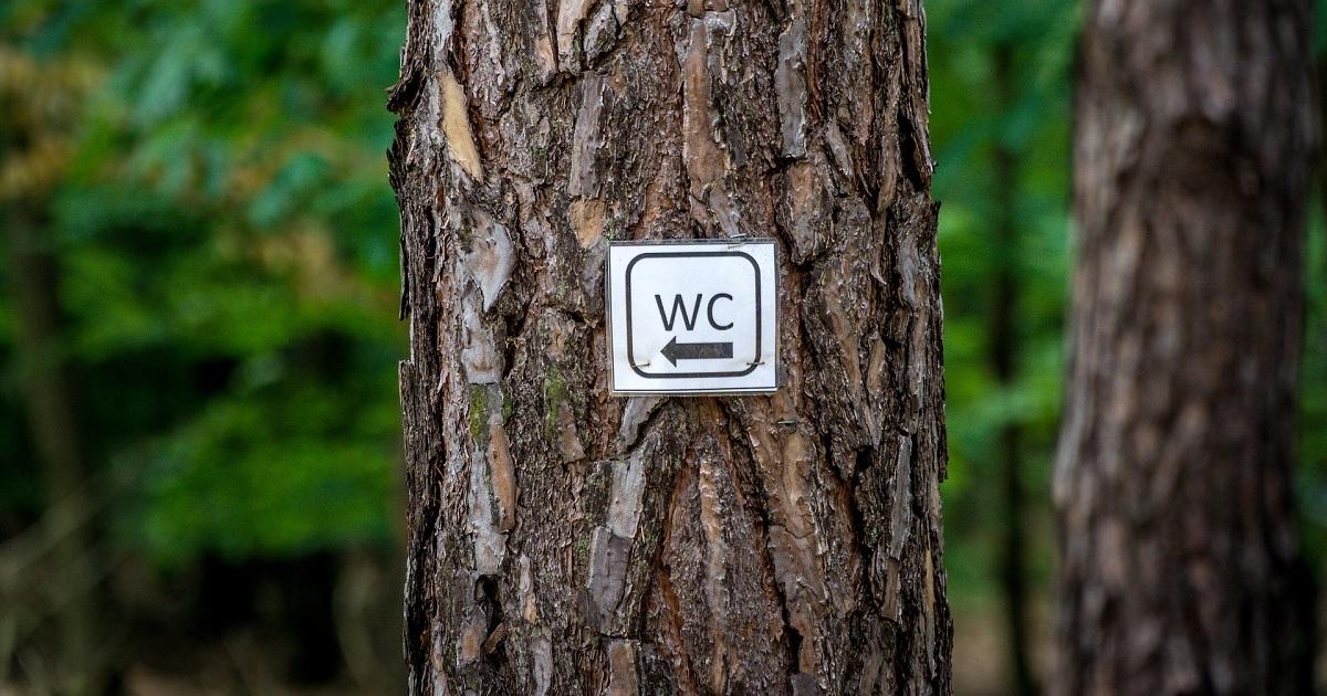 森の中のトイレ標識